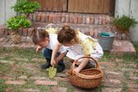 シャベルで土を掘る姉妹