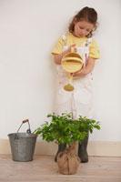 黄色いじょうろで苗木に水をやる女の子