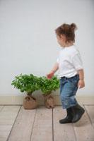 女の子と2本の苗木 21086000699| 写真素材・ストックフォト・画像・イラスト素材|アマナイメージズ