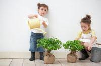 2本の苗木とハーフの姉妹 21086000705| 写真素材・ストックフォト・画像・イラスト素材|アマナイメージズ