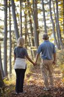 森の中を散歩する夫婦