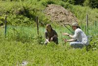 畑作業をするカップル