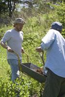 農作業をする男性2人