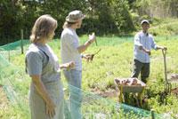農作業をする男性2人と女性