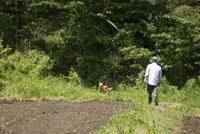 畑の中の男性と犬