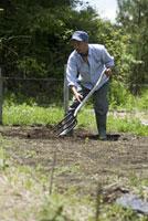 農作業をする男性