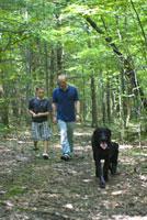 森の中を歩く大人と子供と犬