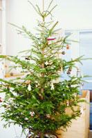 クリスマスツリー 21101000082| 写真素材・ストックフォト・画像・イラスト素材|アマナイメージズ