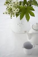 マグカップとポットと木いちご 21102000407| 写真素材・ストックフォト・画像・イラスト素材|アマナイメージズ