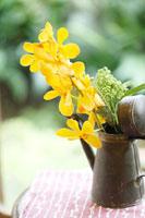 ブリキの水差しにいけた花