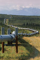 Trans Alaska oil pipeline near Delta Junction. Alaska.