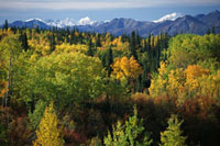 Autumnal view of the Alaska Range from the Glenn Highway. Ce