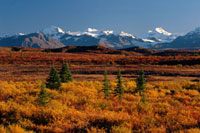 The Alaska Range viewed from the Denali Highway in Autumn. A