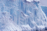 Network of icicles on the side of an iceberg indicate thaw.