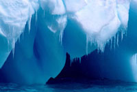 Icicles hang from the edge of a small blue iceberg as the su