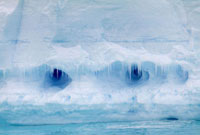 Distincive icicle fronted caves in an iceberg look like eyes