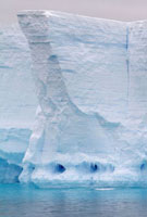 Distincive icicle fronted caves in a tabular iceberg look li