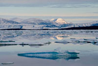 Ice floes in Discovery Harbour.Ellesmere Island National Par