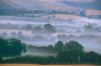 Morning mists in a Dorset valley in late summer befoer harve