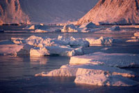 Icebergs floating off Meteorite Island in autumn sunshine. N