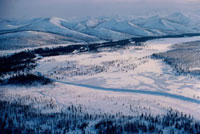 Wooded river valley near Kai'etin,Chukotka,Siberia,Rus