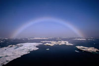 Fogbow over the thawing sea ice in the summer. Chukchi Sea /