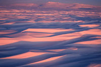 Sastrugi on snow covered winter tundra at sunset. Chukotskiy