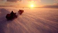 Chukchi hunters travelling from Uelen to Dezhnovka by dog sl