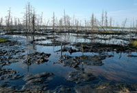 An oil spill from leaking pipes pollutes a lake near Nizneva