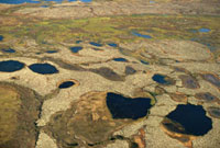 An aerial view of summer tundra with ponds near Nadym in the