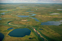 Meandering river & tundra lakes in the short arctic summer.