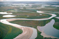 A meandering river & ponds in the summer on the tundra in th