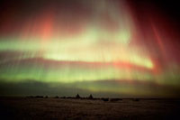 Northern lights,Aurora borealis,over a Nenets reindeer h
