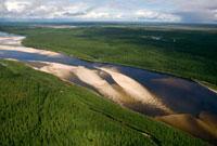 Thw Piaku-Pur River flowing through boreal forest near Tarko