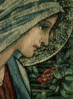 The Virgin's face, detail from The Adoration of the Magi, ma