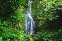Couple at Wailua Falls