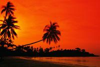 Beach at sunset 22157009506  写真素材・ストックフォト・画像・イラスト素材 アマナイメージズ