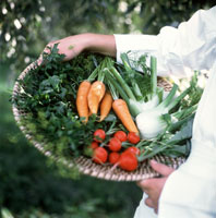 A Person Holding a Basket of Vegetables 22199005146| 写真素材・ストックフォト・画像・イラスト素材|アマナイメージズ