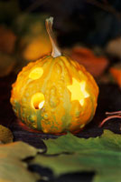 Hollowed out pumpkin and illuminated