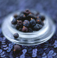 Juniper berries in a small glass bowl