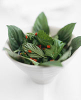 Spicy salad leaves (Vietnam)