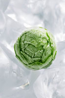 A frozen Brussels sprout on ice