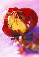 Garlic 22199028551| 写真素材・ストックフォト・画像・イラスト素材|アマナイメージズ