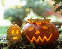 A pair of Halloween pumpkins 22199029639| 写真素材・ストックフォト・画像・イラスト素材|アマナイメージズ