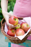 Woman holding basket of fresh apples