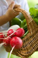 Child holding a basket of radishes