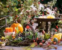 Autumn table decoration 22199033625| 写真素材・ストックフォト・画像・イラスト素材|アマナイメージズ