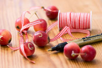 Ornamental apples with checked ribbon