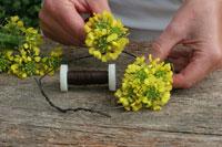 Making a wreath of oilseed rape flowers