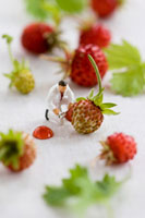Little toy man among wild strawberries
